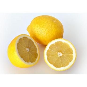 Citron Maroc Mondial Export