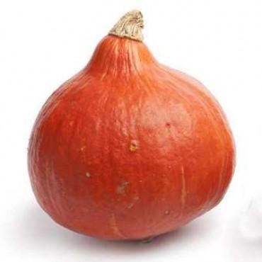 Courge rouge KURI potimarron Maroc