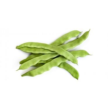 Haricot vert plat - Maroc Mondial Export