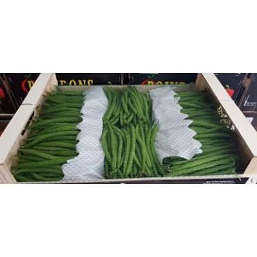 Importer haricot vert filet Maroc