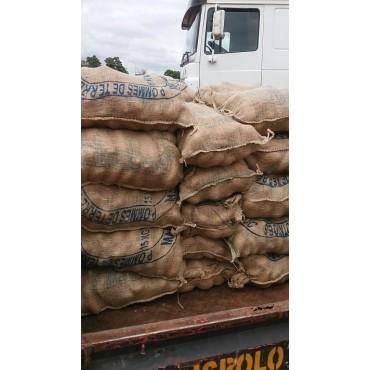 Exportateur pomme de terre Maroc
