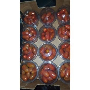 Tomate cerise mitral Maroc export