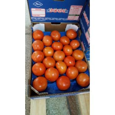 Import tomate Maroc