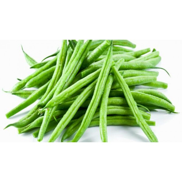 Haricot vert filet - Maroc Mondial Export