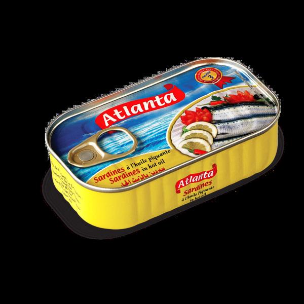 Conserverie export sardine conserve maroc