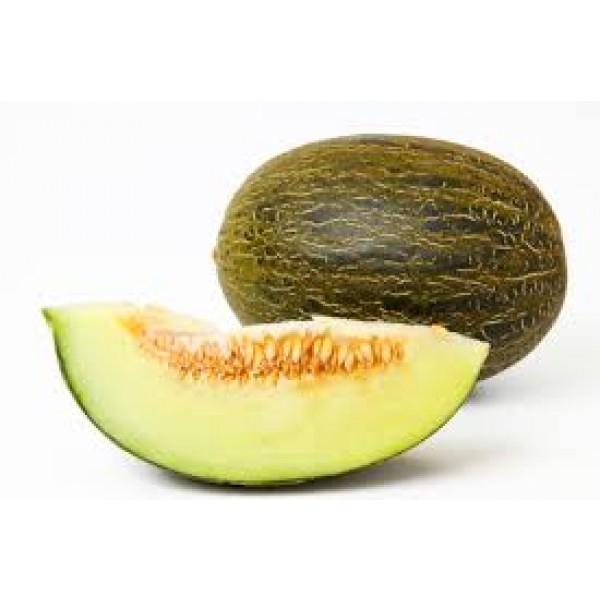 Melon Piel de sapo - Maroc Mondial Export