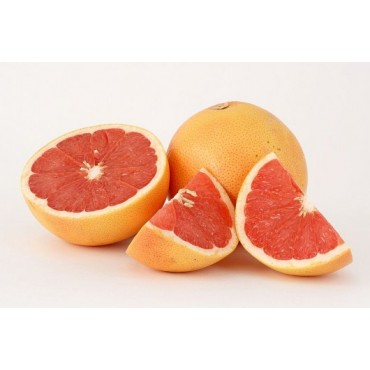 Pomelos- Maroc Mondial Export