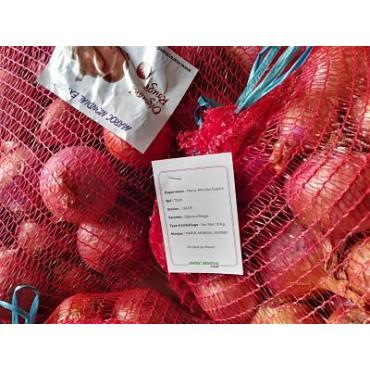 Exportateur Maroc oignons
