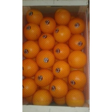 orange Maroc late