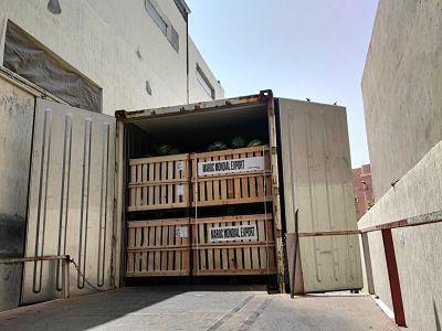 Import pastèque Maroc