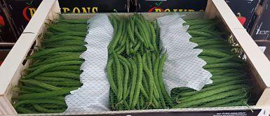 Import achat haricot vert filet