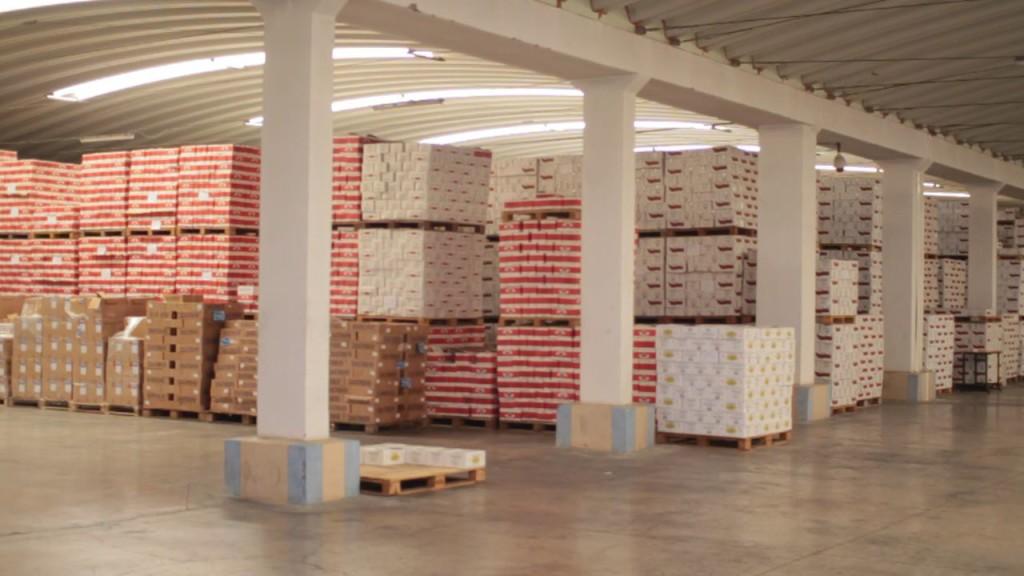 Conserverie poisson sardine Maroc export