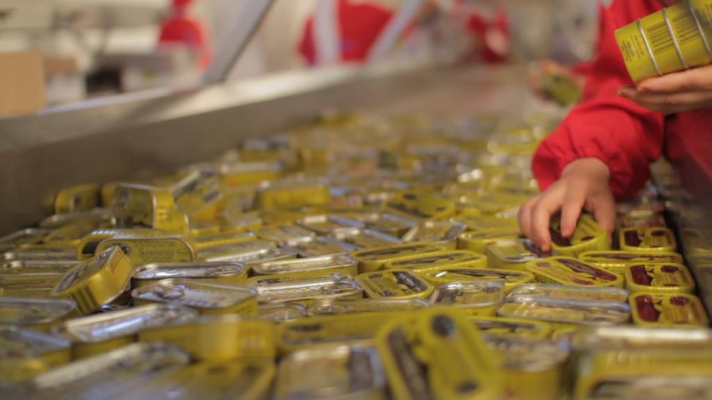 Maroc exportateurs conserve sardines